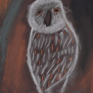 A pastel drawing of a white owl with swatches of light brown on dark brown paper.