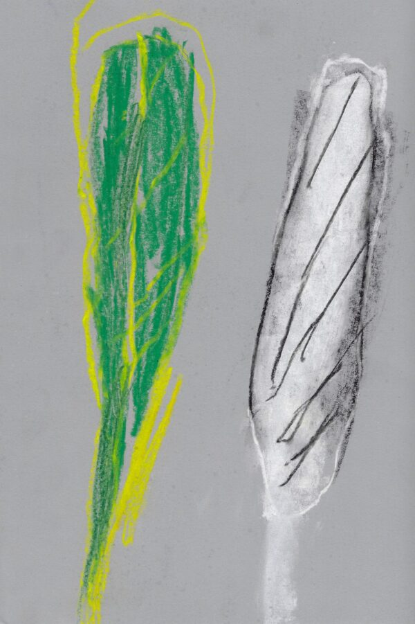 A pastel drawing of two feathers, one green with yellow, one white with black, on grey paper.