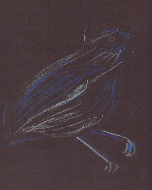 A light pastel drawing of a blue bird on a dark brown background.